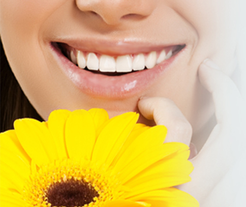 Close-up of a woman's smile and a gerber daisy for dental bridge vs implant from Plano dentist Dr. Miranday Lacy.