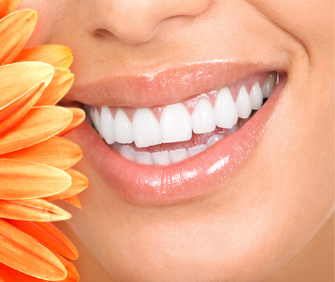 Close-up of a beuatiful smile and a partial gerber daisy for patient reviews of Plano dentist Miranda Lacy DDS.